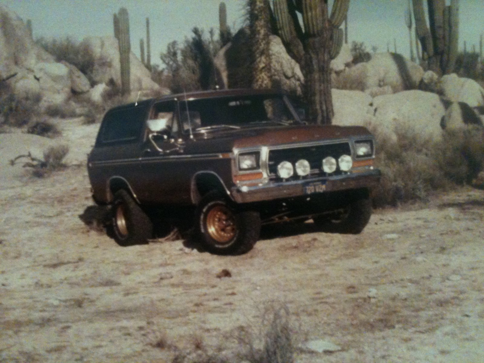 Bronco 1979.JPG