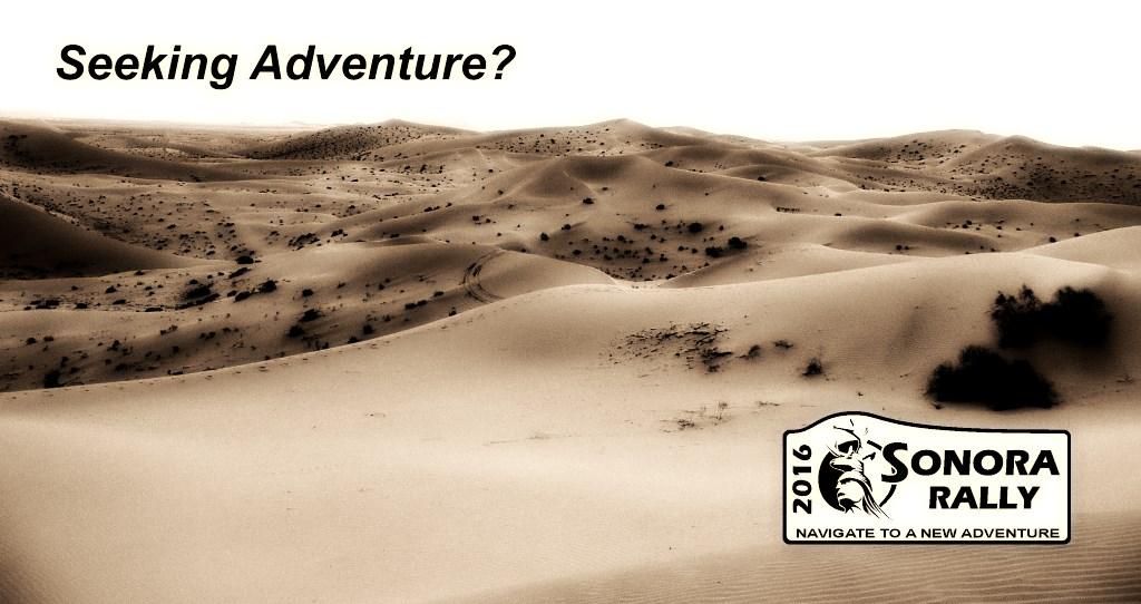 DunesTracksAdventure_P1000571.jpg