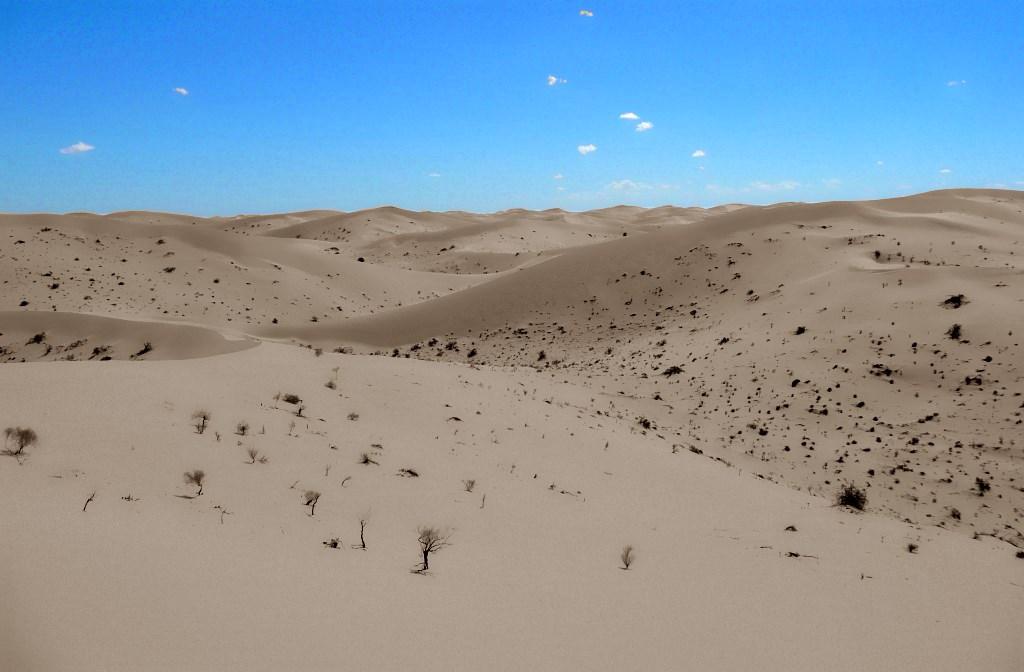 Dunes_B_P1000442.jpg