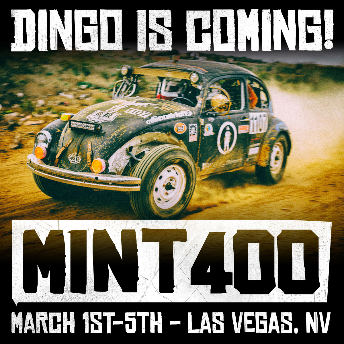 2017_mint_400_dingo_is_coming.jpg