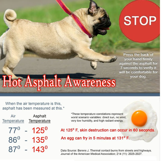 Hot-Asphalt-Awareness1.jpg