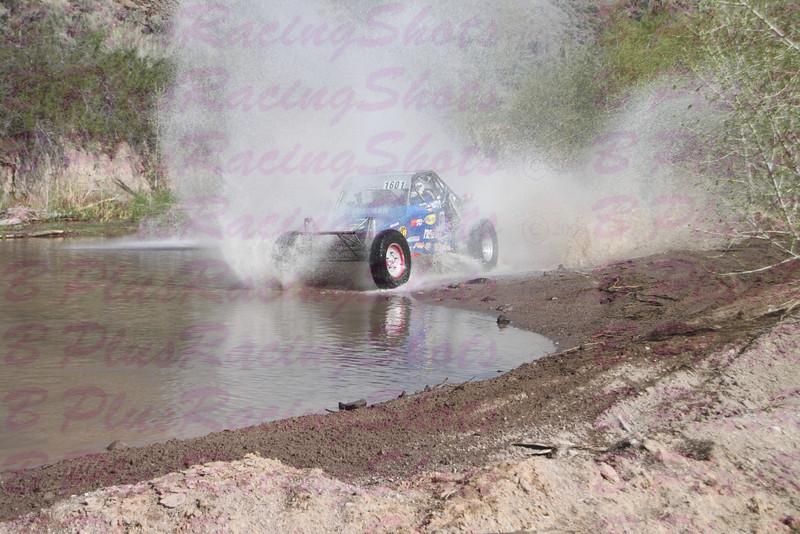 dusty w.jpg