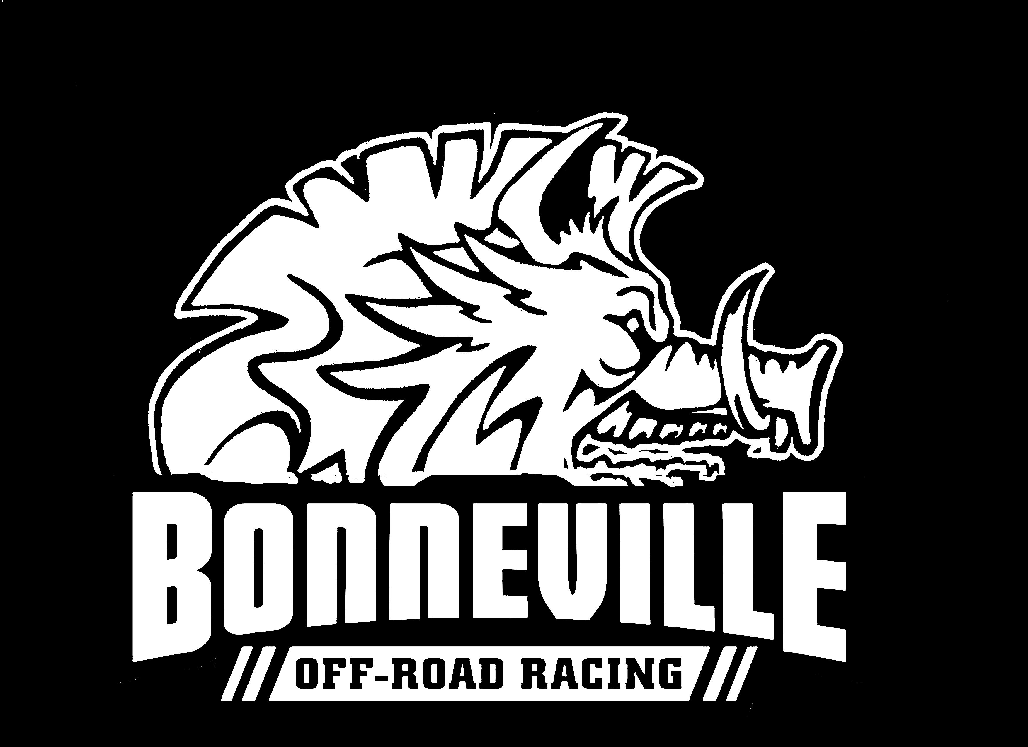 BOAR with logo silhouette inverted.jpg
