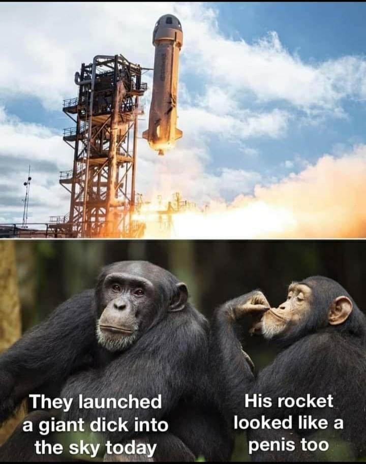 monkey rocket.jpg