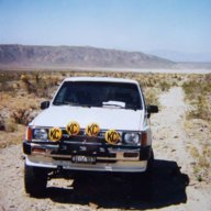 Mojave Traveler